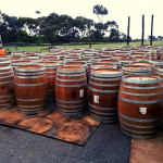 wine barrel whole